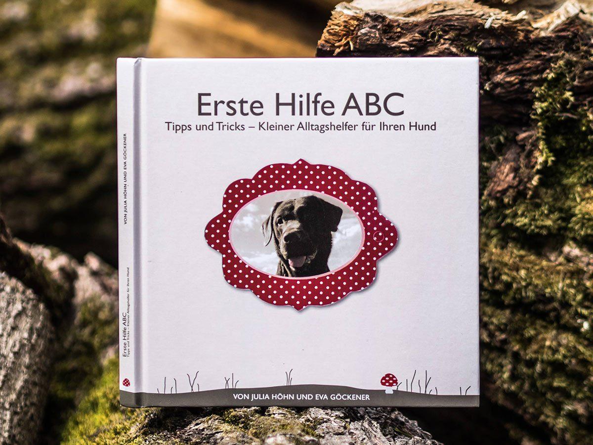 Dogaid - Erste Hilfe ABC für Hunde