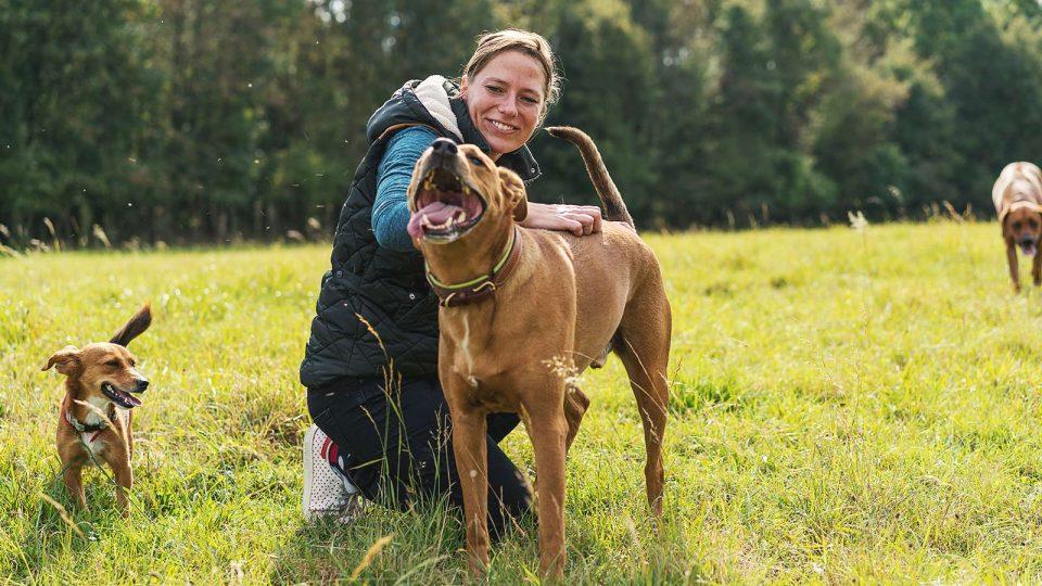 Sozialspaziergang der Hunde bei Hundetraining Leinenlos in München