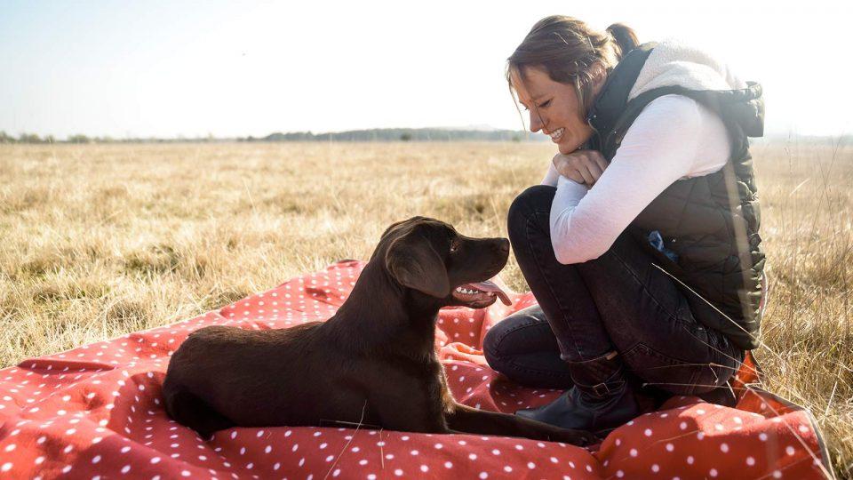 Hundebetreuung auf der Heide - Hundetraining Leinenlos in München