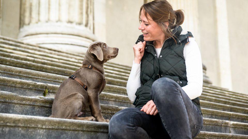 Junghunde Training - Hundetraining Leinenlos in München