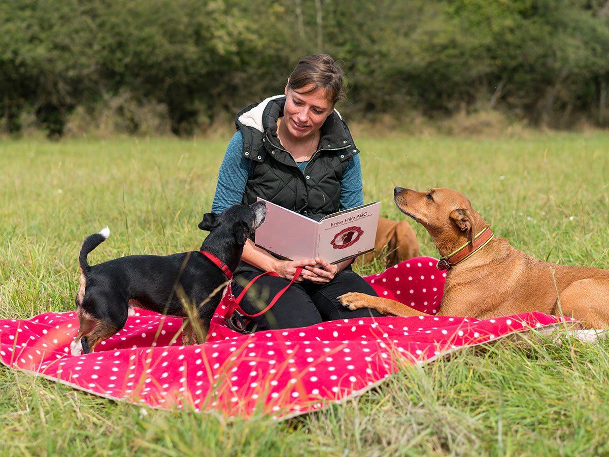 Dogaid Nachschlagewerk zur Erstversorgung des Hundes