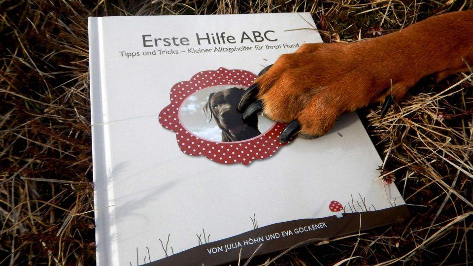 Dogaid Erste Hilfe ABC von Hunden empfohlen