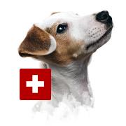 Dogaid - die Hundeapotheke für unterwegs