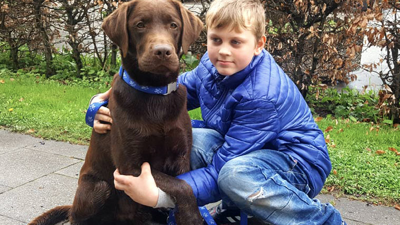 Leinenlos Hundetraining - Besuchshunde vor Ort bei Familien mit Projekt Tillmann Kinder- und Jugendhaus