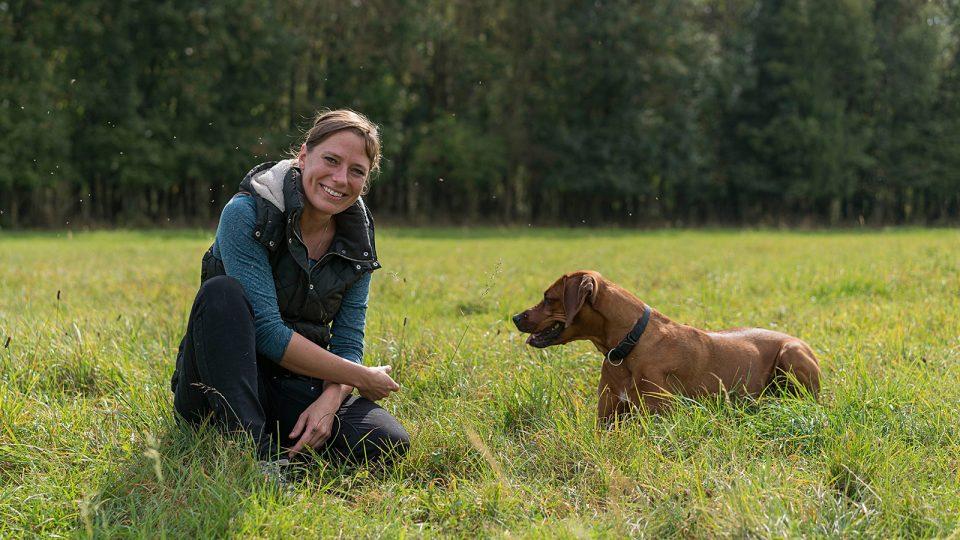 Hundebetreuung und Training